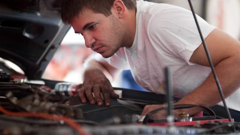 Chris Driscoll / Shutterstock.com